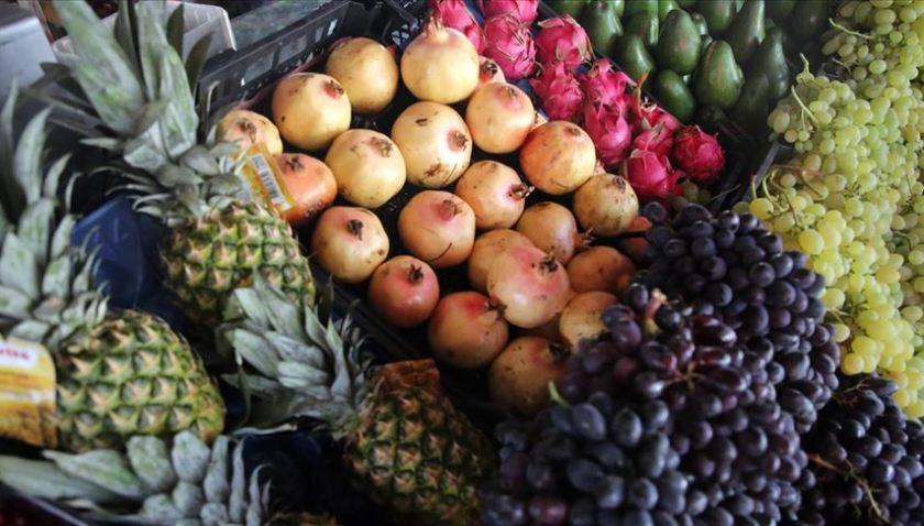 Egeli Tarımsal Ürün İhracatçılarının Hedefi 10 Milyar Dolar