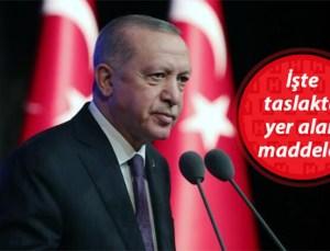 Cumhurbaşkanı Erdoğan Talimatı Verdi… Hayvanları Koruma Kanunu geliyor!