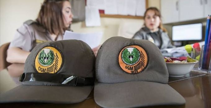 Orman Genel Müdürlüğü (OGM) 16 Bin 500 Kamu Personeli Alacak
