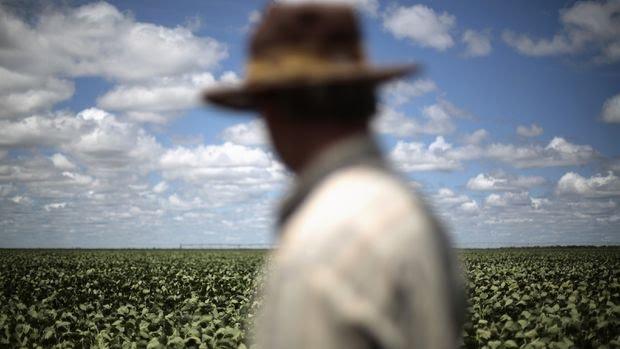 Küresel Gıda Fiyatları 12 Aylık Aralıksız Yükselişinin Ardından Geriledi
