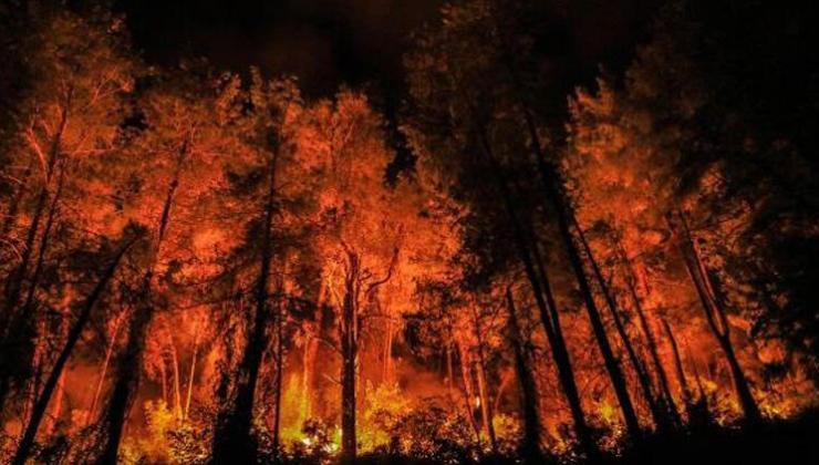 Bucak Yangınıyla İlgili Yeni Gelişme! 6 Kişi Serbest Bırakıldı