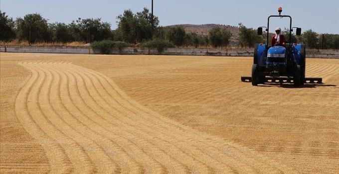 Denetimlerle Türk tarım ürünlerinin ihraç pazarlarındaki kalite imajı korunacak