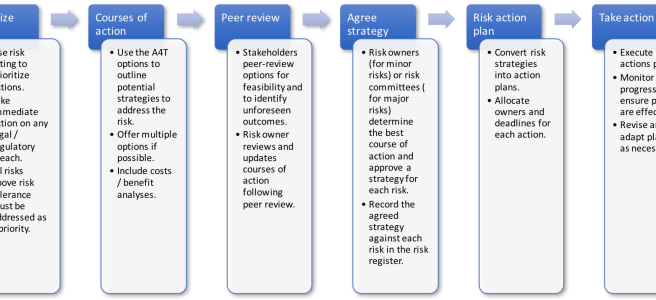 process for addressing risks