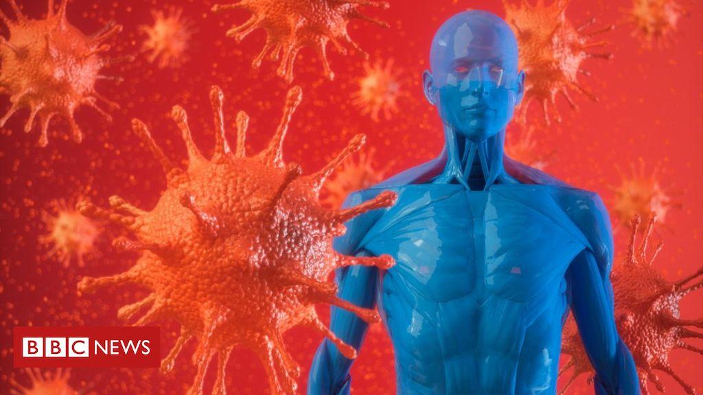 Onde Está A Proteção Contra O Coronavírus