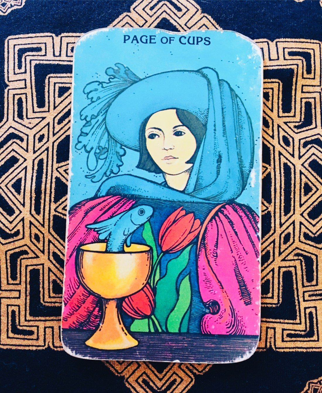 Page of Cups tarot card, and life is an adventure