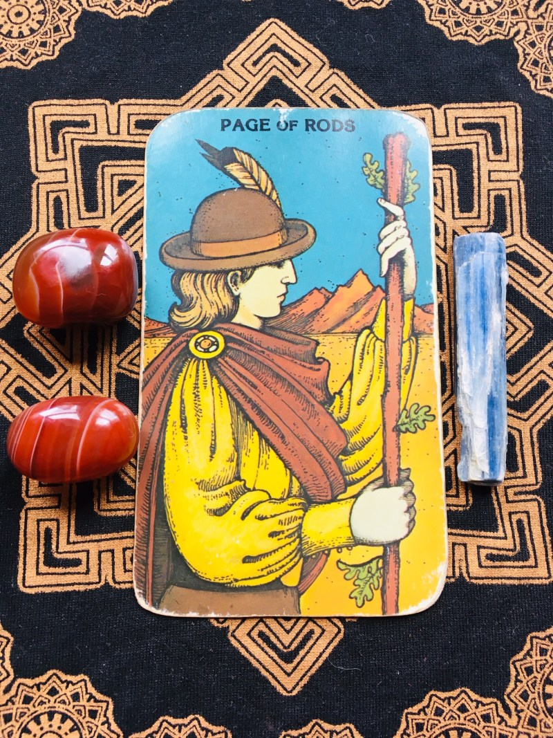 Page of Rods tarot card