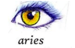 aries - The perfect X'mas gift for each Zodiac sign
