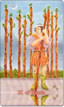 Image of The Nine of Wands card
