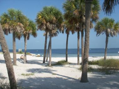 beach-report-pict0011