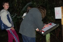 All action at one of the sites with plenty of Lyrebird calls to record.