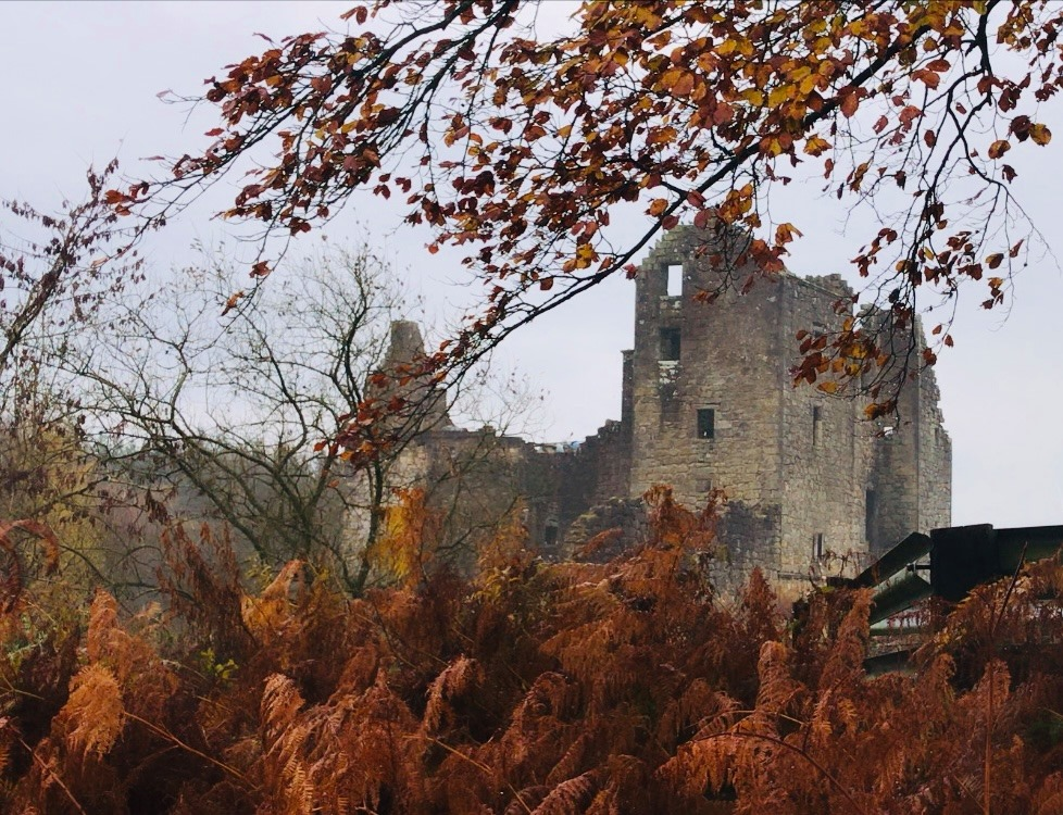 Torwood Castle from a distance