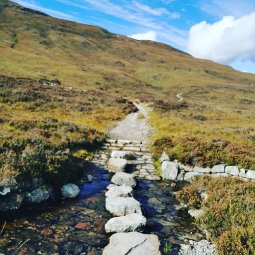 Stepping stones on WHW