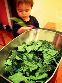 Sous Chef Prepping Kale