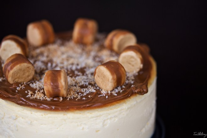 Cheesecake_aliter 4