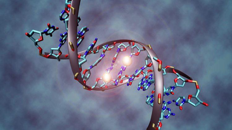 الحمض النووي يبين تاريخ الوفاة