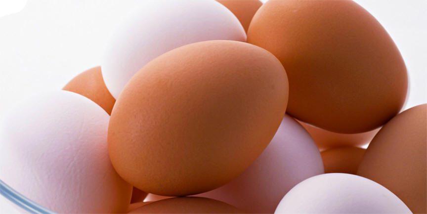 البيض يحمي السيدات من سرطان الثدي
