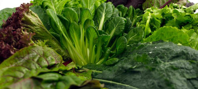 الخضراوات الورقية تسهّل الهضم وتقاوم الأمراض