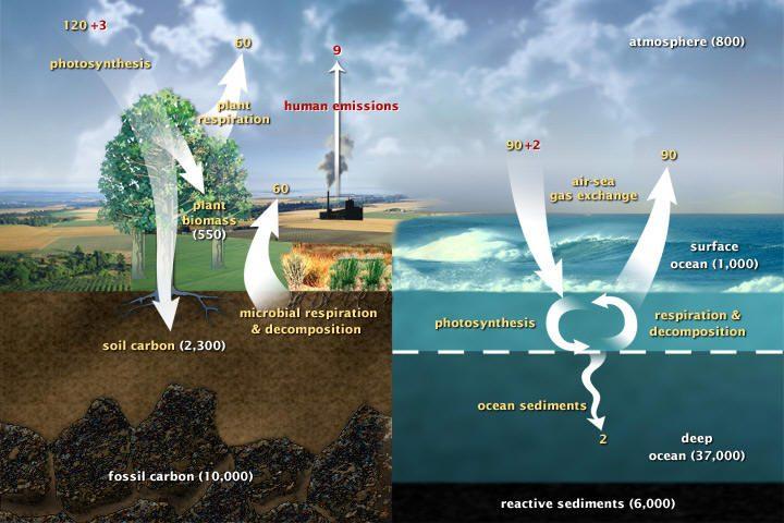 التقاط CO2 وتخزينه في طبقات الأرض