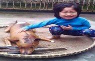 دموع طفلة على كلبها تثير غضبا دوليا بشأن أكل لحوم الكلاب