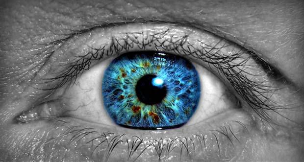 عمى الألوان Color blindness