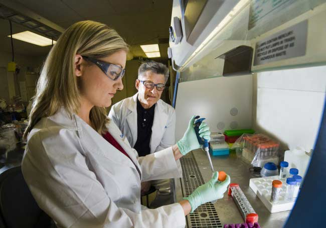 العلماء يكتشفون طريقة فعالة في علاج الأمراض السرطانية