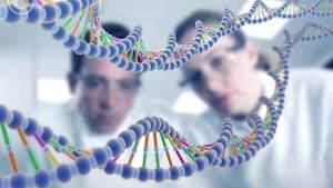 الجينات تؤثر في العقيدة السياسية للناس