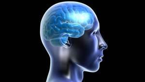 أمراض الكلى والدماغ مرتبطة ببعضها