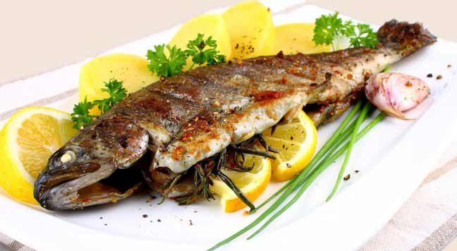 فوائد الأسماك الطبية