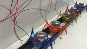 روبوتات تحاكي أرجل النمل وزنها 100 غرام تجر سيارة تزن طنين