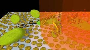 قريبا استبدال مضادات الحيوية بجسيمات الذهب النانوية