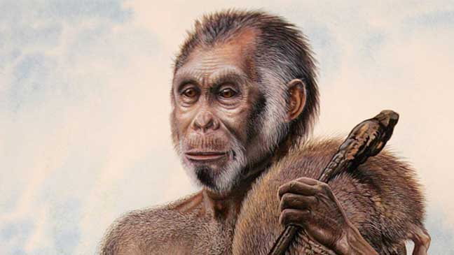 """عمر شعب """"الهوبيت"""" الإندونيسي 700 ألف عام"""