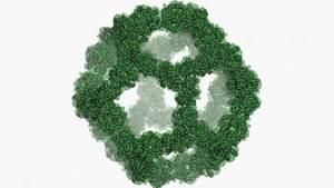 فيروسات اصطناعية دون أحماض نووية ضد السرطان