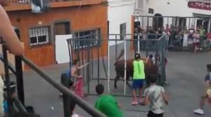 ثور يفاجئ مصارعاً إسبانيا داخل قفص حديدي