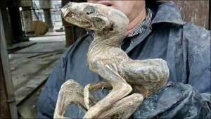 عامل منجم في سيبيريا يعثر على مخلوق غامض محنط