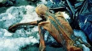 العلماء يواصلون استنطاق مومياء رجل الجليد