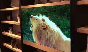 باناسونيك تكشف عن تلفاز غير مرئي
