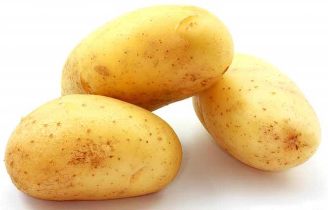 البطاطــا