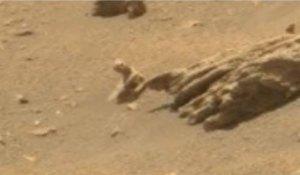 أدلة جديدة تزعم وجود حياة على المريخ
