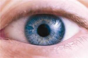 ثورة علمية في مجال زراعة شبكية العين