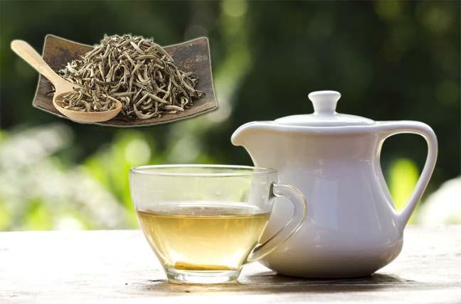 الشاي الأبيض آخر صيحة في دنيا المشروبات
