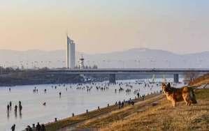 نهر الدانوب يتحول بفعل الشتاء القارس إلى جنة المتزلجين