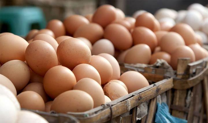 الفرق بين البيض البلدي والأحمر والأبيض