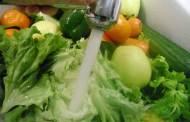 الحفاظ على الخضروات الورقية أطول فترة ممكنة