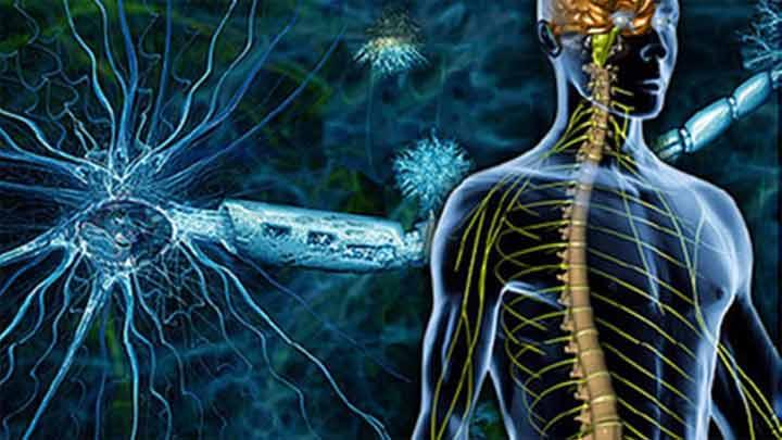 التصلب اللويحي Multiple Sclerosis