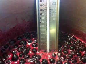 Boiling the berries.  If you like, you can put a thermometer in the jam.  220F is the temperature where jelling happens. However, be patient. This takes time.