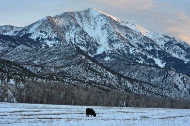 Mt. Sopris, Colorado