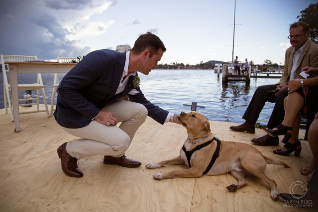 groom patting his dog at wedding