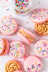 Sugar Cookie Macarons