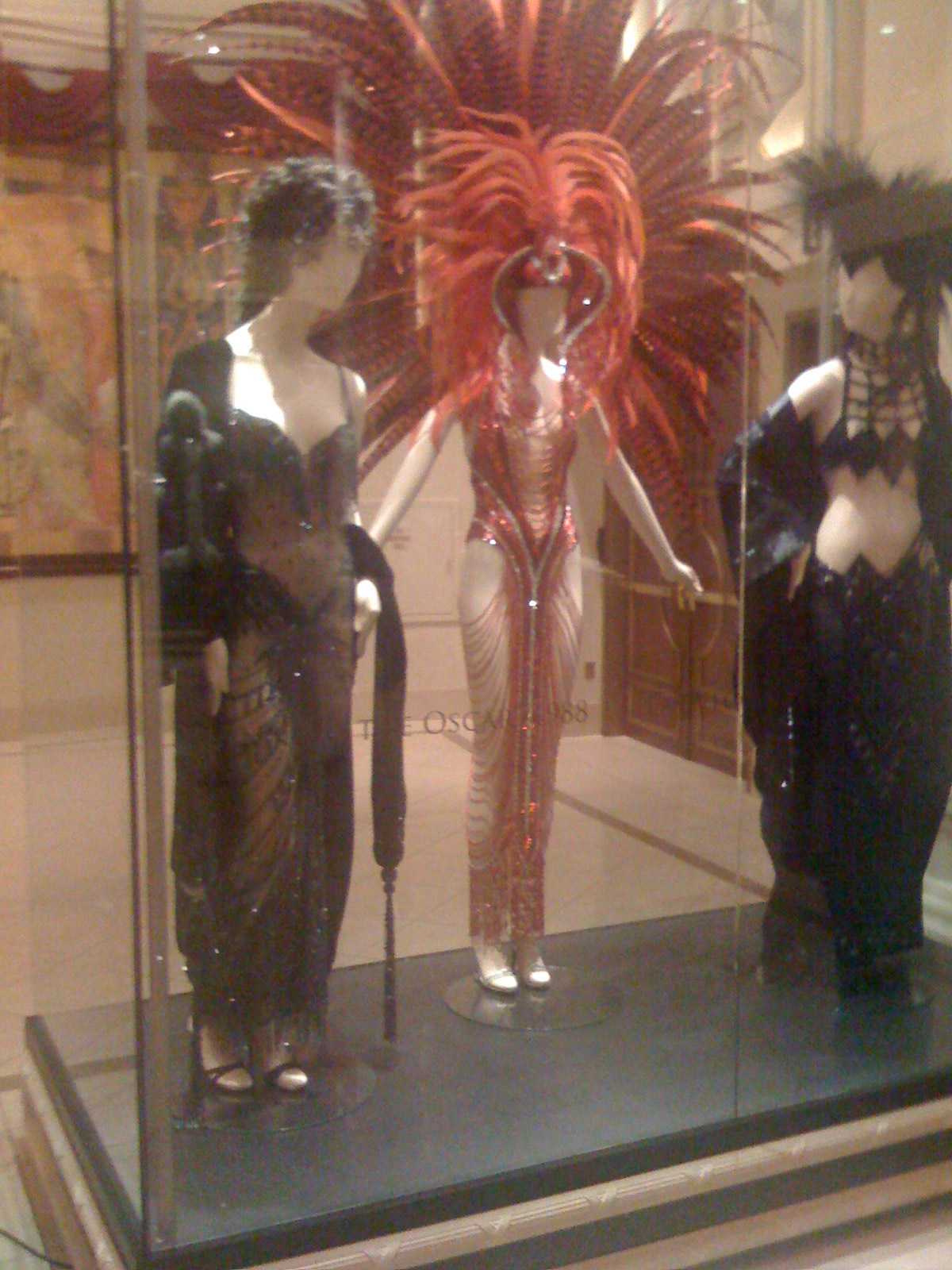 Cher's Outfits ( photo by Tasithoughts)