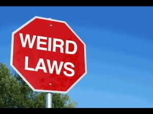 παράξενοι νόμοι